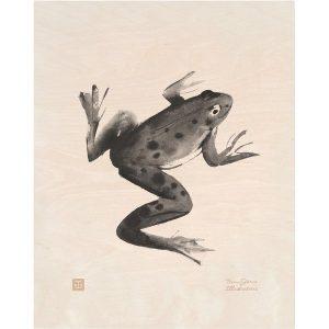 Teemu Järvi Illustrations Frog plywood poster