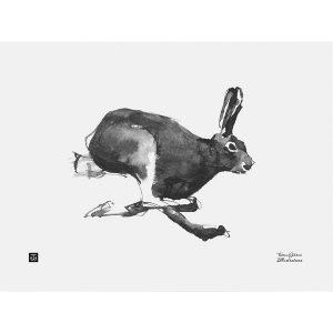 Teemu Järvi Illustrations Hare poster